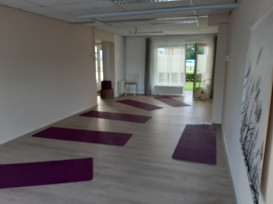 gallery/locatie yoga sterrenburg